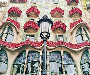 spain, Barcelona, and flowers image