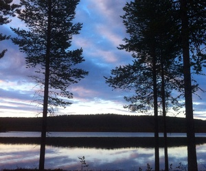 finland, night, and palace image