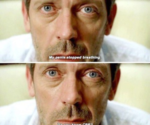house md, hugh laurie, and quote image