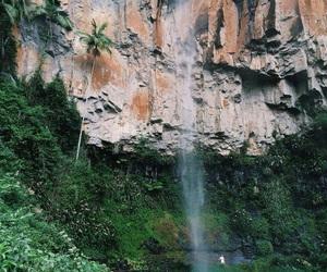 adventure, amazing, and jungle image