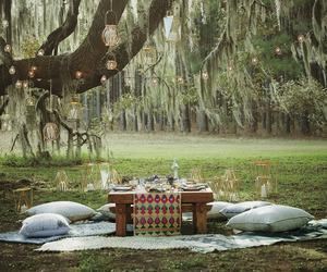 picnic and tree image