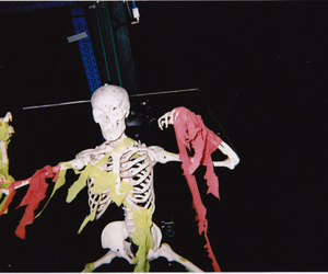 skeleton, indie, and hipster image