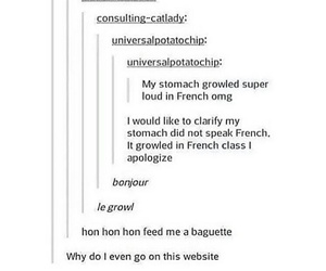 funny, tumblr, and french image