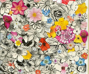colorful, flowers, and pattern image