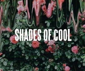 lana del rey, shades of cool, and cool image