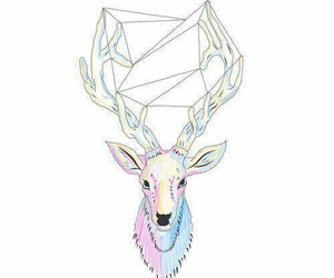 deer and transparent image