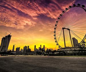 photography, ferris wheel, and sunset image