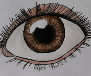 brown eye, colour, and drawing image
