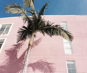 pink, palm trees, and summer image