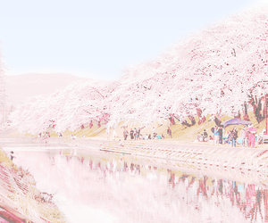 aesthetic, water, and blossom image