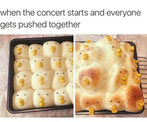lol, concert, and funny image