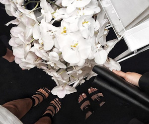 flowers, white, and luxury image
