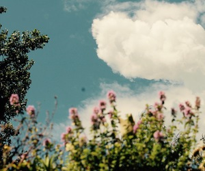 cloud, flower, and indie image