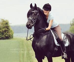 horse, jenny, and mambo image
