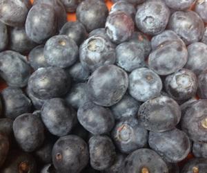 berries, blue, and vegan image