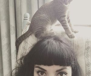 gato, mon, and laferte image