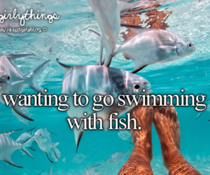 fish, summer, and swimming image