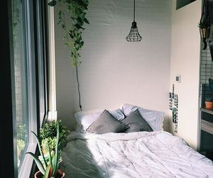 bedroom, plants, and house image