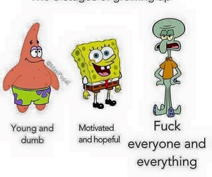 funny, life, and spongebob image