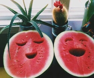 beach, cool, and fruit image