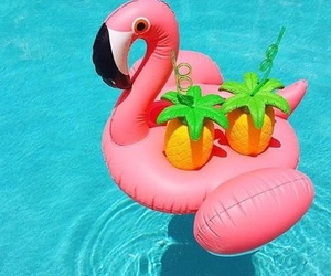 summer, pool, and flamingo image