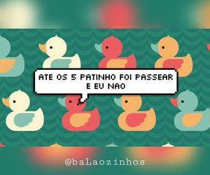 encontro, passear, and pato image