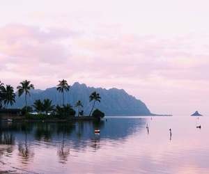 pink, summer, and sea image