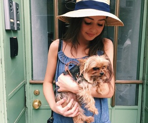 puppy, sunshine, and eileen kelly image
