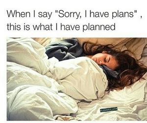 funny, sleep, and plan image