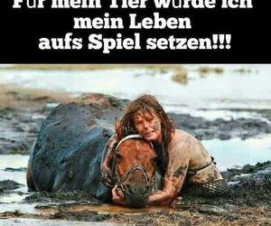 deutsch, german, and true image