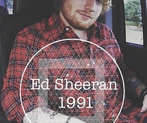 1991, bear, and ed image