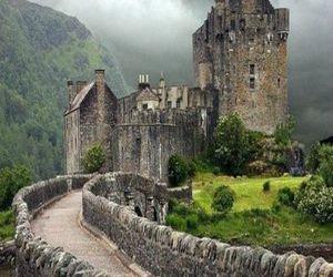 nature, scotland, and castle image