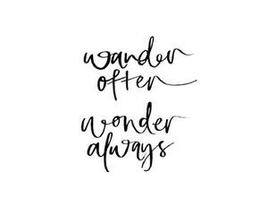 quote, life, and wonder image