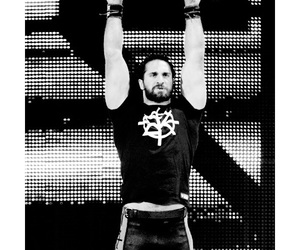 wwe superstars and seth rollins image