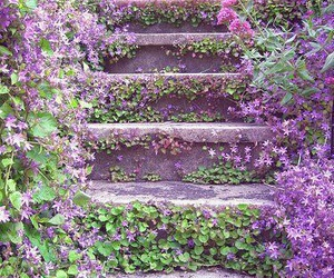 flowers, purple, and stairs image