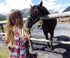 girl horse, horse, and horse riding image