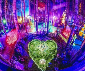 festival and electric forest image