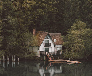 forest and house image