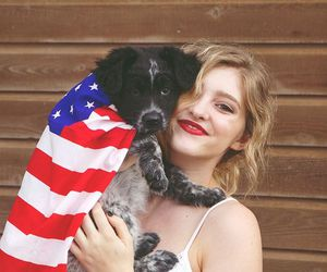 dog, willow shields, and cute image