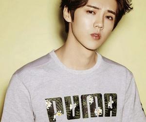 exo, k-pop, and luhan image