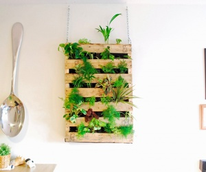diy, garden, and pallet image