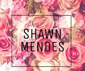 mendes, shawn, and wallpapers image