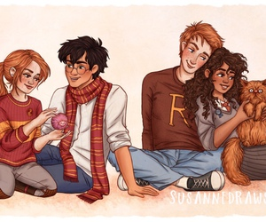 hermione, couple, and ginny image