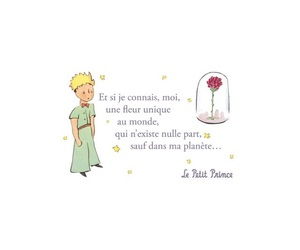 the little prince, le petite prince, and love it image