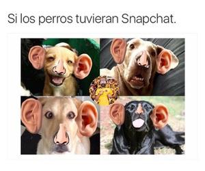 espanol, funny, and guatemala image