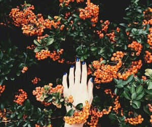 orange, flowers, and green image