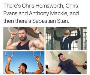 sebastian stan, chris evans, and chris hemsworth image