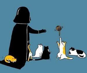 cat, star wars, and darth vader image