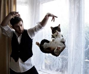 cat and magic image