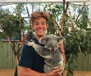 cameron dallas, Koala, and boy image